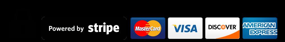 Secure Stripe Payment Logo